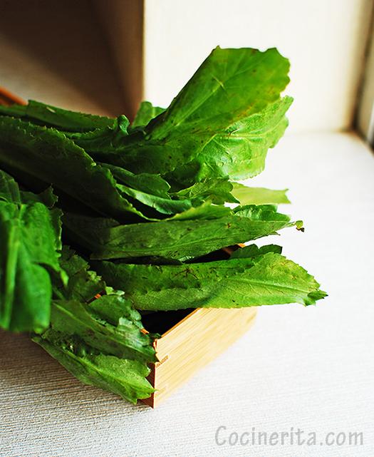 Culantro Fresh Herb - Cocinerita.com